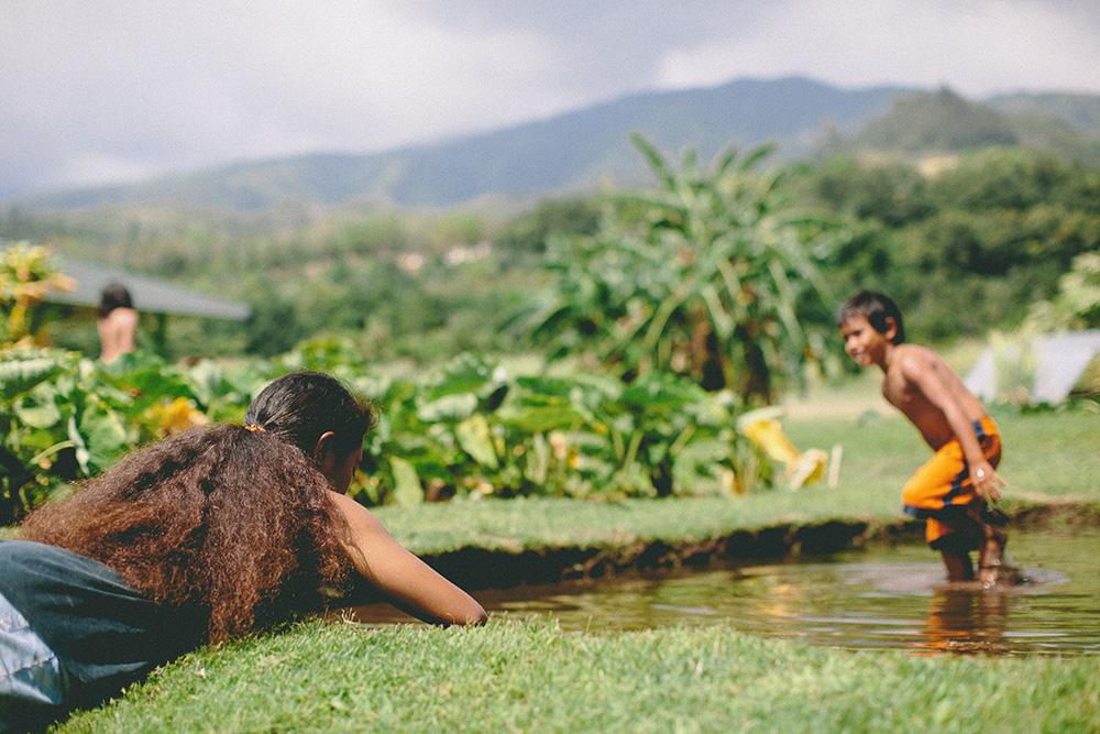 hawaiian-family-taro-patch-maui