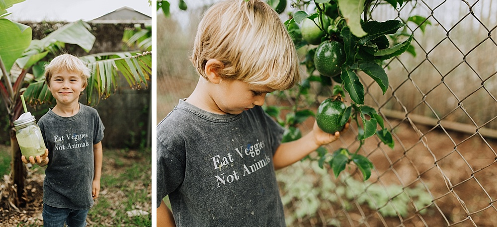 cadencia photography - backyard picnic with ellen fisher, vegan family on Maui, Hawaii.